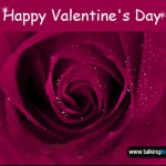 happy-valentines-day-2013-gif